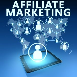 Professional Affiliate Program Management Services for your business